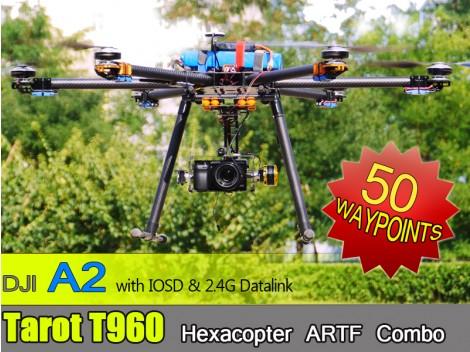 Tarot T960 A2 50 Wps ARTF Combo