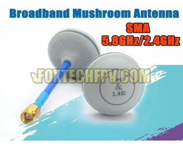 Dualband Mushroom Antenna