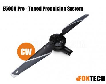 E5000 Pro - Tuned Propulsion System-CW
