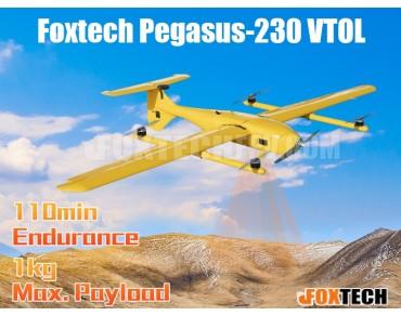 Foxtech Pegasus-230 VTOL